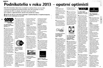 Unternehmer im Jahre 2013 – vorsichtige Optimisten